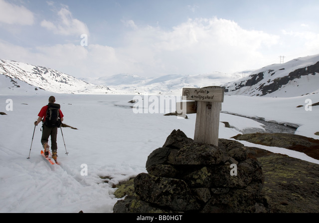Doug Blane passing Route marker between Myrdal and Hallingkeid, Hordaland, Norway on skies in winter - Stock Image