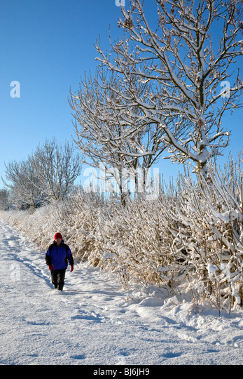 Winter snow on a farm track in North Yorkshire in the United Kingdom - Stock Image