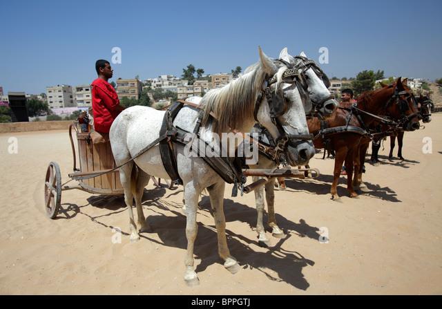Roman chariots, Jerash, Jordan - Stock Image