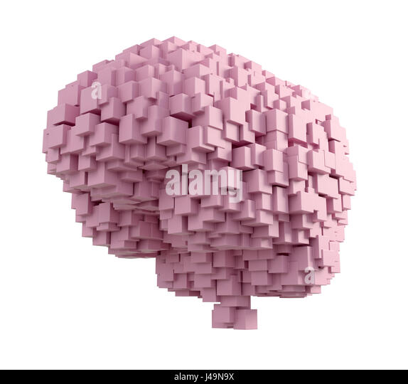 Human brain - intelligence and memory concept 3D illustration - Stock-Bilder
