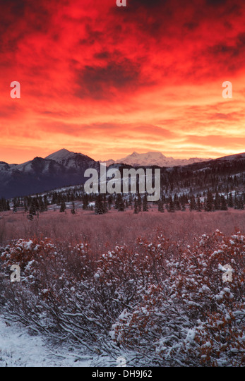 Sunrise over Denali National Park, Alaska. - Stock Image