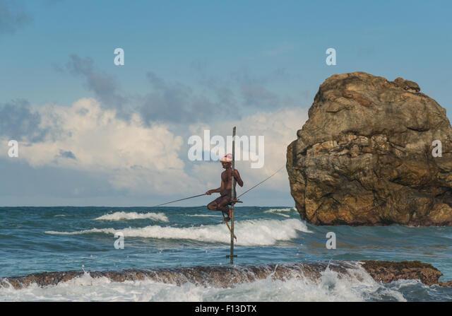 Stilt fisherman fishing, galle, Sri Lanka - Stock Image