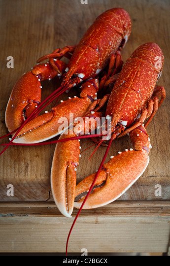Two whole ready boiled lobsters on wooden kitchen chopping board - Stock Image
