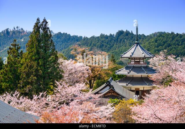 Yoshino, Japan at Kinpusenji Temple. - Stock Image