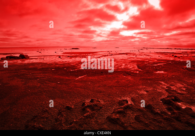 Global Warming - Stock Image