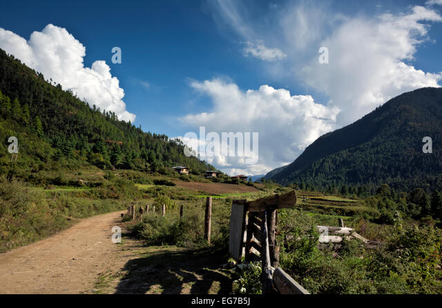 BHUTAN - Fenced in fields in Paro Chhu Valley near the end of the road at town of Sharna Zampa, part of the Jhomolhari - Stock Image