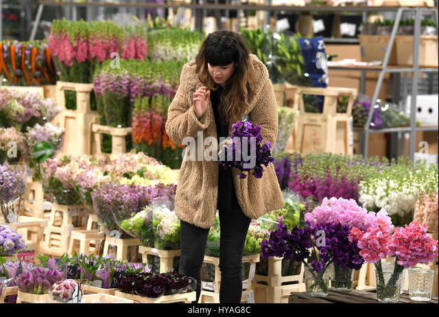 EDITORIAL USE ONLY A customer inspects blooms on the opening day of the new Flower Market at New Covent Garden Market - Stock Image