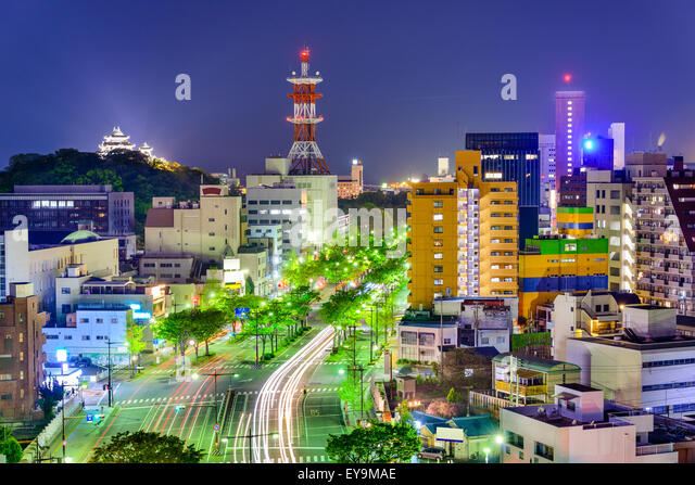 Wakayama City, Japan downtown skyline. - Stock-Bilder