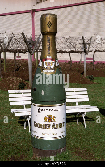 "Big bottle of ""champagne"" at Georges Aubert Winery, Bairro Cairu, Garibaldi, southern Brazil - Stock Image"