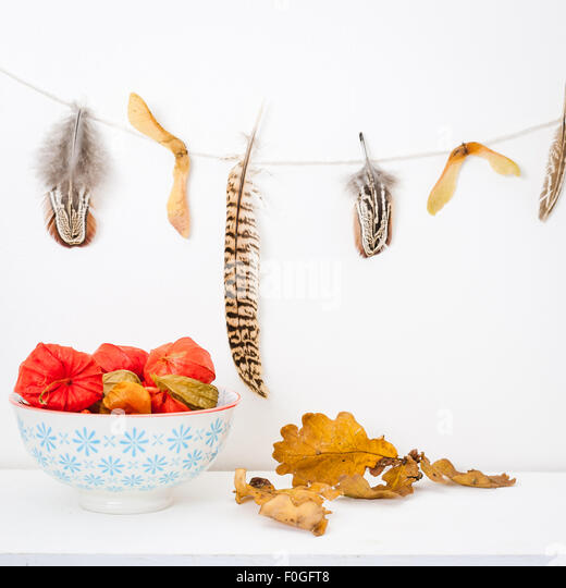 a bowl of chinese lanterns on a white shelf, oak leaves and a feather garland - Stock Image