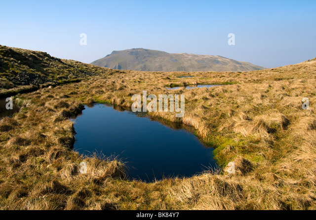 Moel Llyfnant from Craig y Bychau, in the Arenig hills, near Trawsfynydd, Snowdonia, North Wales, UK - Stock Image