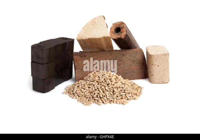 different sorts of fossil fuels, wooden pellets, briquettes, dried firewood, and carbon on white background, isolated, - Stock Image