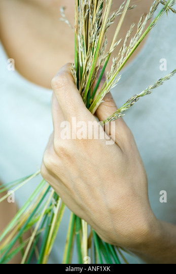 Woman holding handful of vegetation up, close-up, cropped - Stock Image