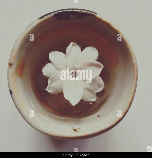 Minimalist photo of jasmine flower floating in tiny ceramic handmade cup - Stock Image