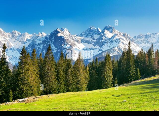 Rusinowa Glade, Tatra Mountains, Poland - Stock Image