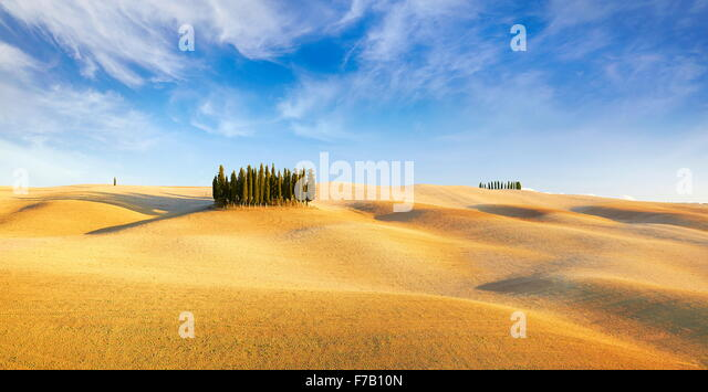 Val d'Orcia, cypress trees, Tuscany, Italy - Stock-Bilder