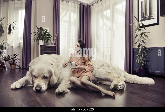 Young lady hugging big dog - Stock Image