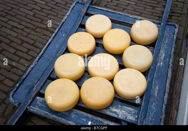 Cheese on sledge Netherlands - Stock Image