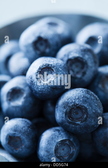 fresh blueberries - Stock Image