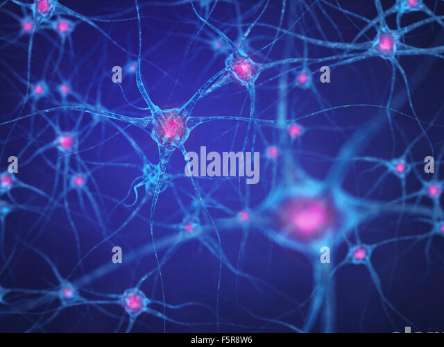 Neural network , Brain cells , Human nervous system - Stock Image