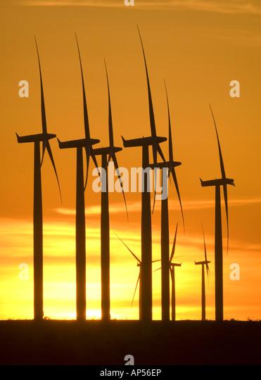 Wind turbines on Texas windfarm at sunset. - Stock Image