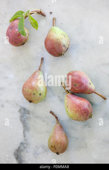 fruit fresh picked pears - Stock Image