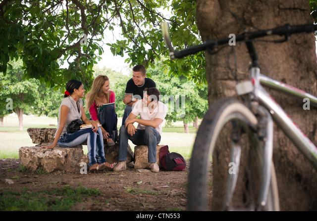 Young people at school, group of four college students doing homeworks in park - Stock Image