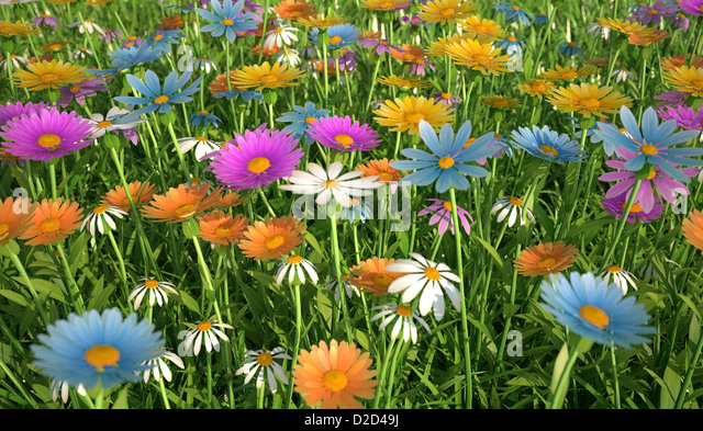 Wildflower meadow computer artwork - Stock Image