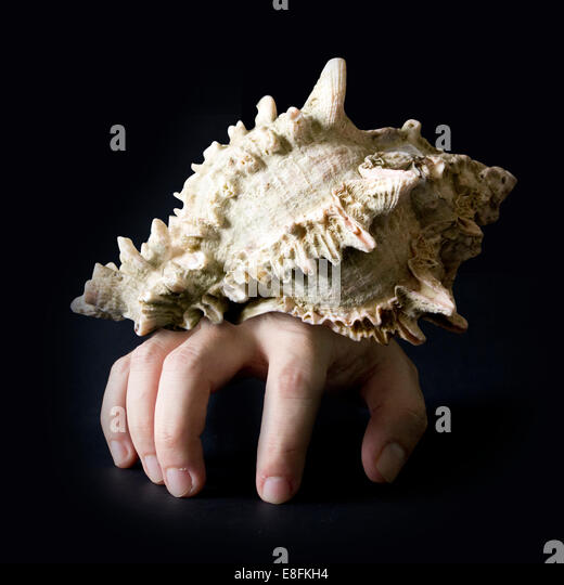 Conceptual Crab And Shell - Stock Image