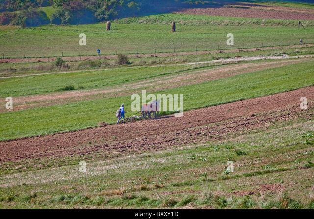 Autumn plowing, Czorsztyn, Poland - Stock Image