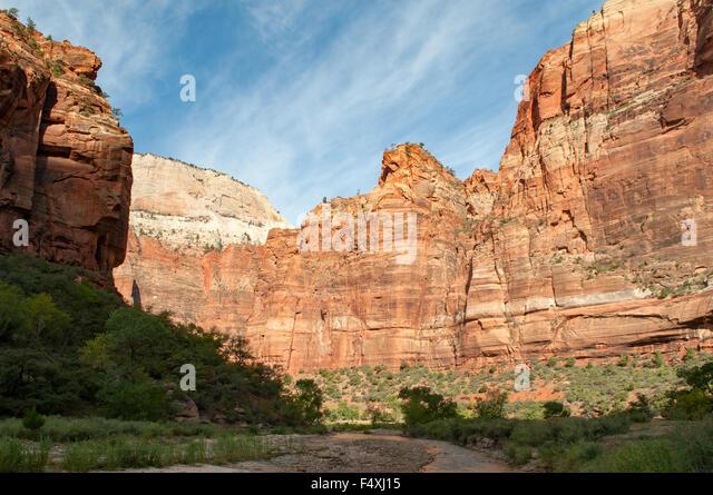 View near Weeping Rock, Zion NP, Utah, USA - Stock Image
