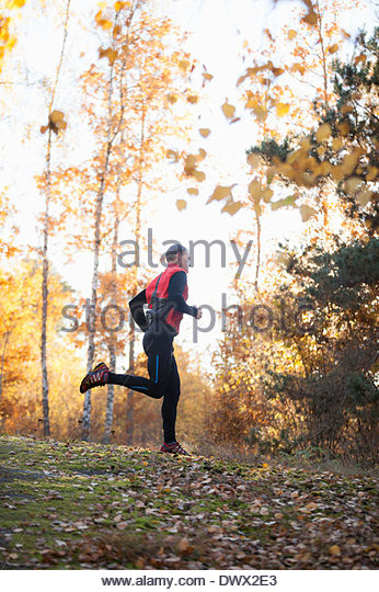 Full length of mid adult man jogging in forest - Stock-Bilder
