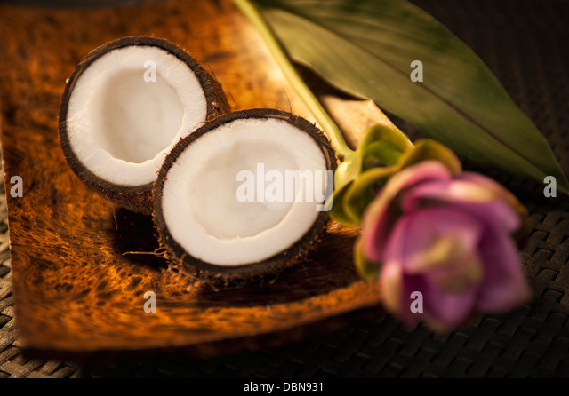 Coconut And Flower - Stock Image