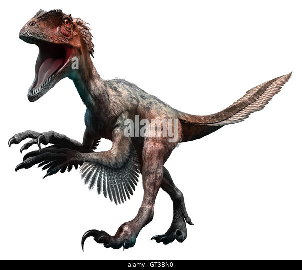 Deinonychus Stock Photos & Deinonychus Stock Images - Alamy
