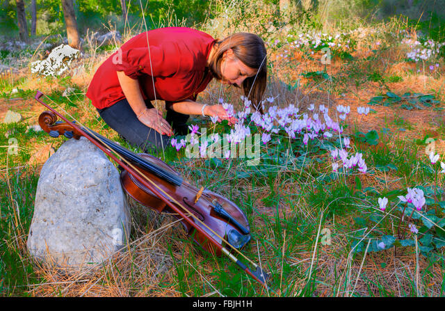 Autumn evening in the forest, sun rays, through the trees, more light forest  glade. Girl has put violin and collects - Stock-Bilder