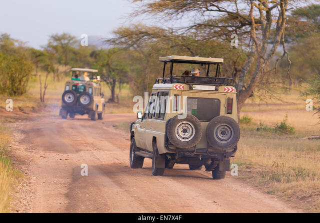Jeeps on african wildlife safari. - Stock-Bilder