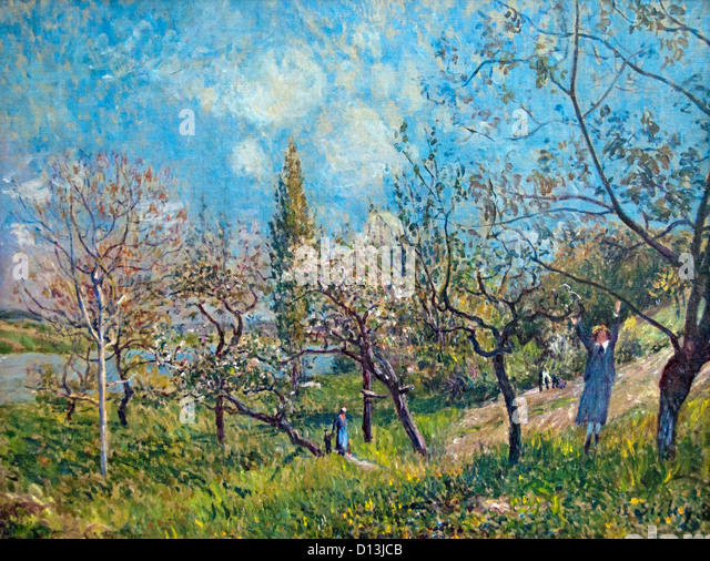 An Orchard in springtime 1881 Alfred Sisley Alfred Sisley 1839 - 1899 British / French Impressionist - Stock Image