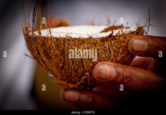Fijian waiter serving freshly cracked coconut milk, Malolo Resort, Mamanucas Islands, Fiji - Stock Image