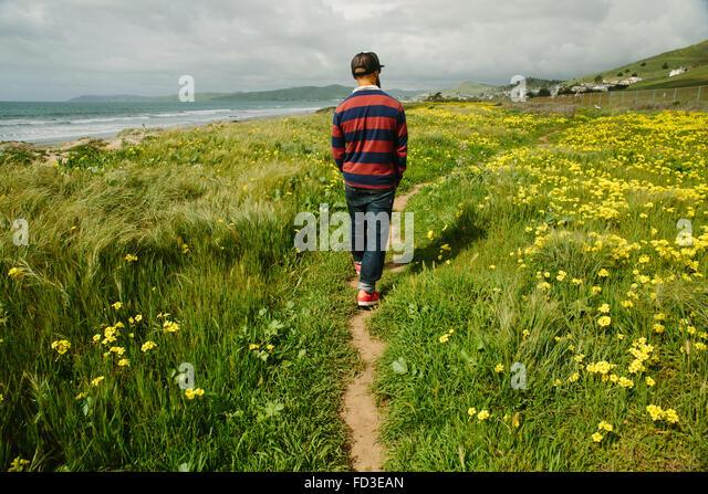 A man walks among the yellow flowers along the shoreline of Big Sur, California. - Stock Image