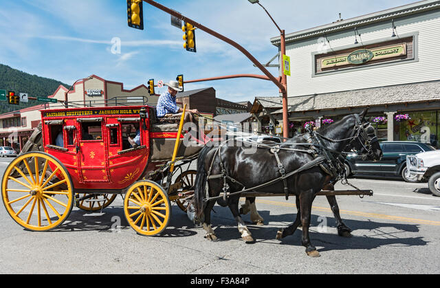 See the Deadwood Stagecoach in Cody Wyoming