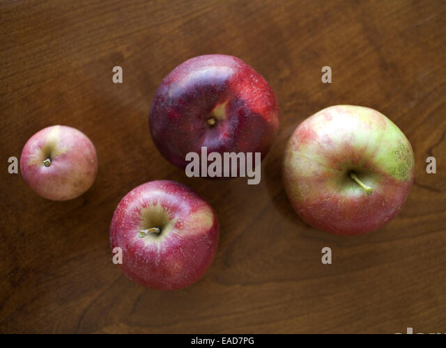 Four Organic Apples - Stock Image