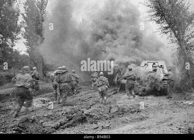 Battles of Poltava - Stock Image