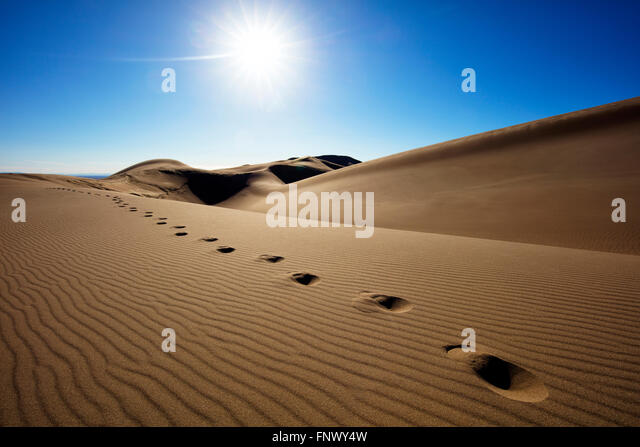 Bright sun over footsteps in remote desert sand dunes, Great Sand Dunes National Park, Colorado, USA. - Stock Image