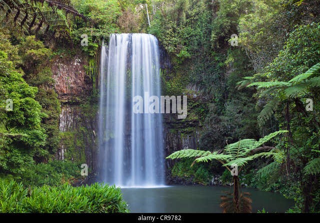 Millaa Millaa Falls, Atherton Tablelands, Queensland, Australia - Stock Image