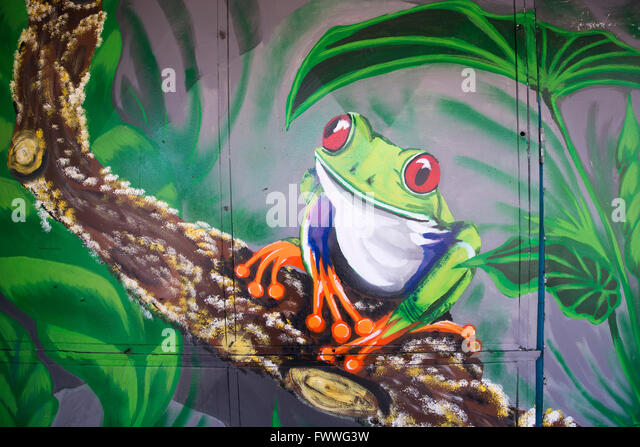 Graffiti of a frog in the rain forest, San Jose downtown, San José Province, Costa Rica - Stock Image
