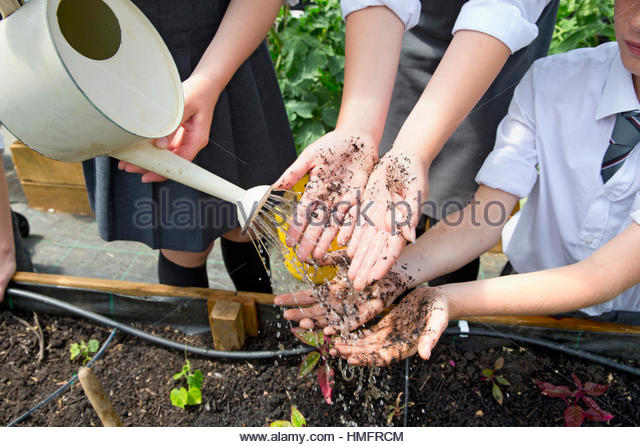 Middle school students with dirty potting soil hands gardening washing hands with watering can - Stock-Bilder