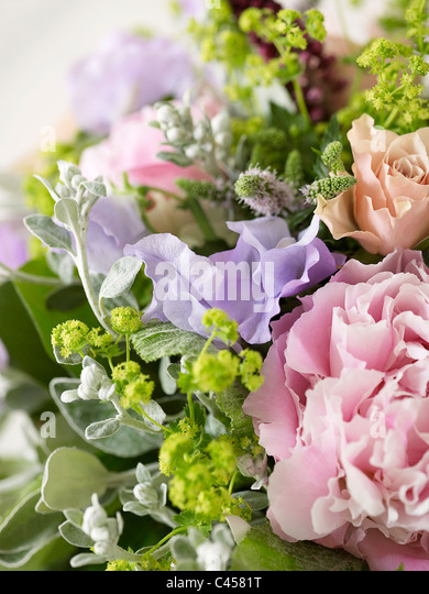 Bunch of flowers including roses, peonies, pea flowers, alchemilla, spearmint, close-up - Stock Image