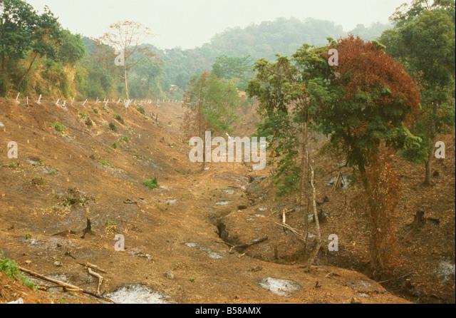 Deforestation for farmland cleared by slash and burn Mogok Hills Mandalay District Myanmar Burma Asia - Stock Image
