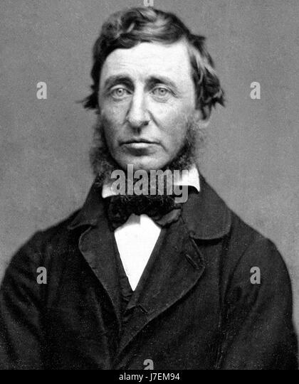 HENRY DAVID THOREAU (1817-1862) American naturalist, writer, author and philosopher in 1856 - Stock-Bilder