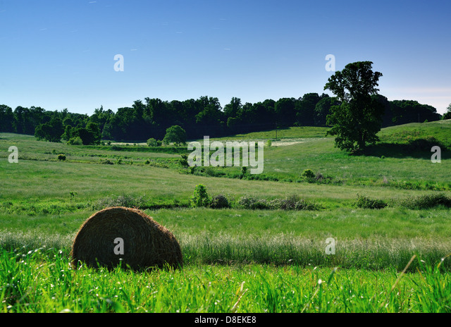 Moonlit farmlands in North Georgia, USA. - Stock Image